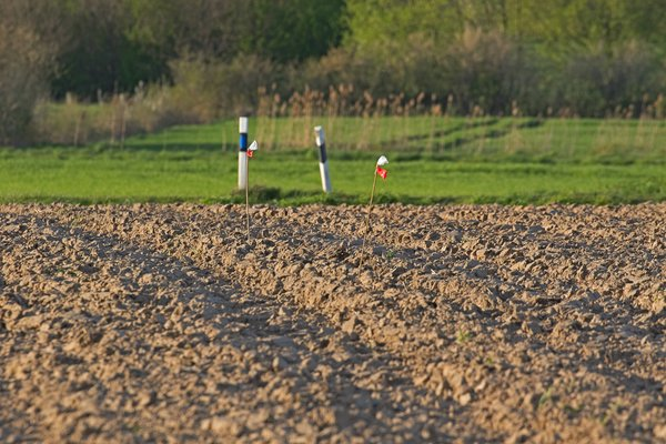 Das markierte Nest wird bei der Bodenbearbeitung ausgespart (B. Beckers)