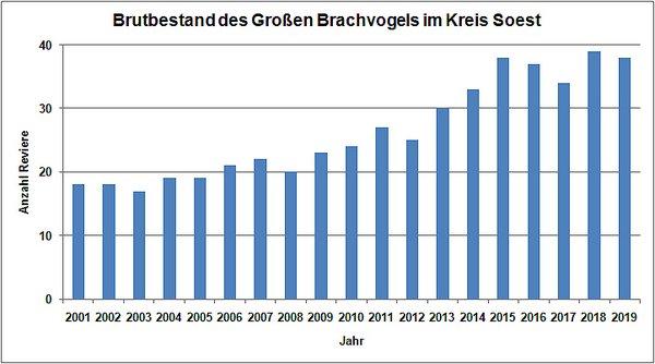 Bestandsentwicklung des Großen Brachvogel im Kreis Soest von 2001 bis 2019