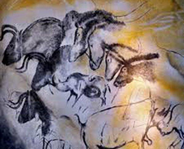 Vorbilder für die Zucht der Taurus-Rinder bei der ABU sind steinzeitlichen Höhlenbilder aus ganz Europa
